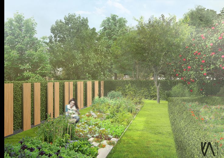 PROJECT \\  'moGARDEN't' community garden    visualisation 'II'  HEALTH   EDUCATION   COMMUNITY   DEVELOPMENT   NATURE by kART LANDSCAPE DESSIGN