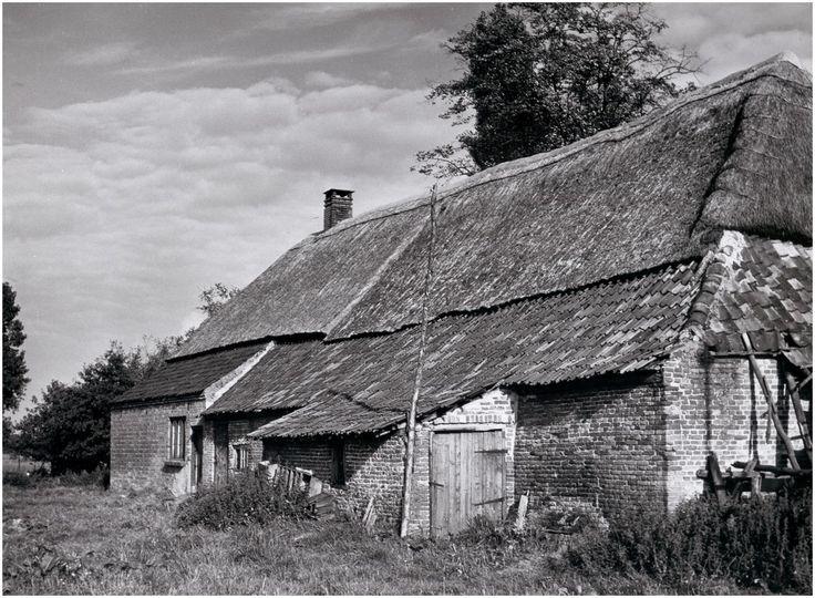 Oud-Kempische boerderij  Swinkels, Noud # Foto Enface (fotograaf) - 1966