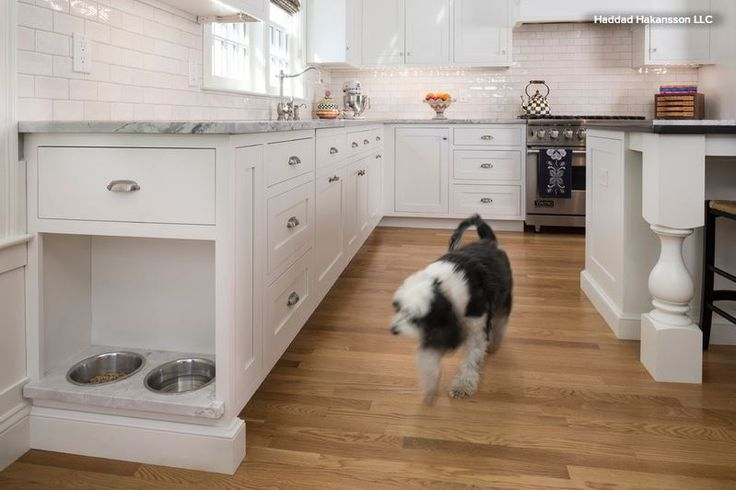 Pet-Friendly Design: Making Room for the Dog Dish — American Cabinet & Flooring, Inc.