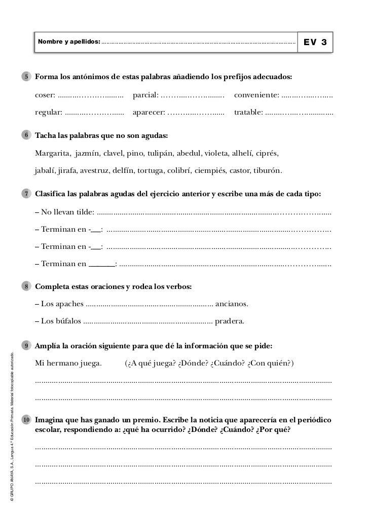 Evaluaciones De Lengua 4º Primaria Anaya Palabras Agudas Antónimos Actividades De Aprendizaje Para Niños