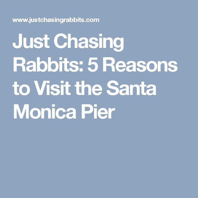 Just Chasing Rabbits: 5 Reasons to Visit the Santa Monica Pier
