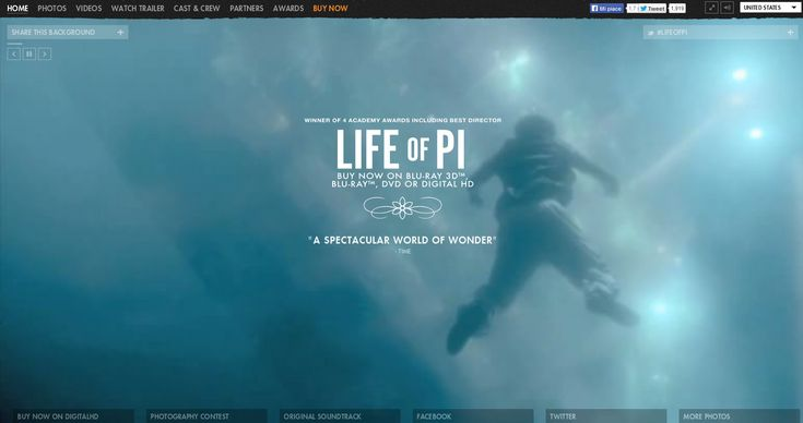 Life Of Pi site