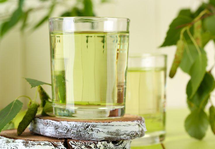 Détox : Quels sont les bienfaits du jus de bouleau ? - http://fredericlouvet.com/blog/detox-quels-sont-les-bienfaits-du-jus-de-bouleau/