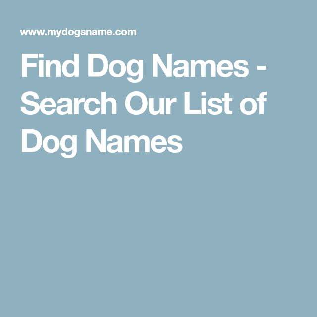 Find Dog Names - Search Our List of Dog Names