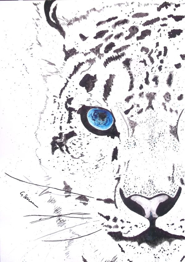 'Snow Tiger' Animal painting by Guinevere Saunders Artist Watercolour on 140lb Watercolor Paper 2014