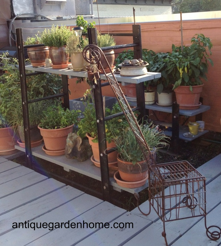 321 Best Images About Garden Rooftop Designs On Pinterest: 21 Best Images About Roof Garden Ideas On Pinterest