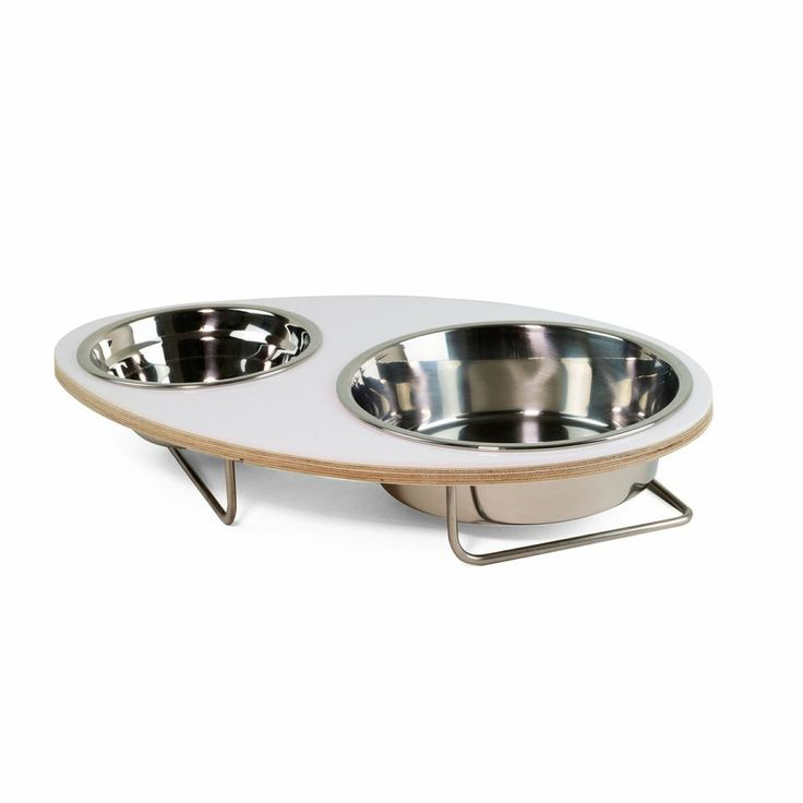 EGGY, Stainless Base design with a colorful attractive bowls holder - for Modern Cat and Modern Dog.  Price £29.99