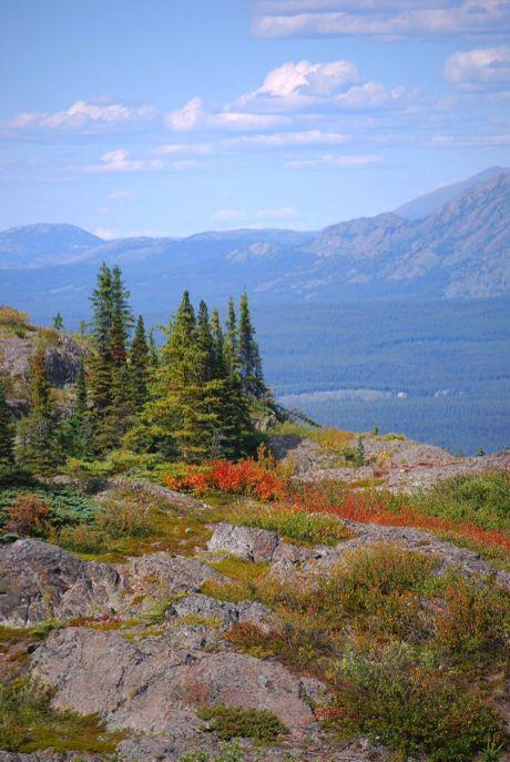 Grey Mountain, Whitehorse, Yukon