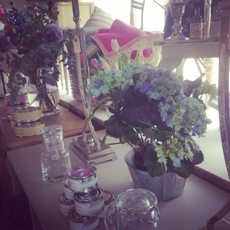 Hydrangea shop two peas framlingham painted furniture