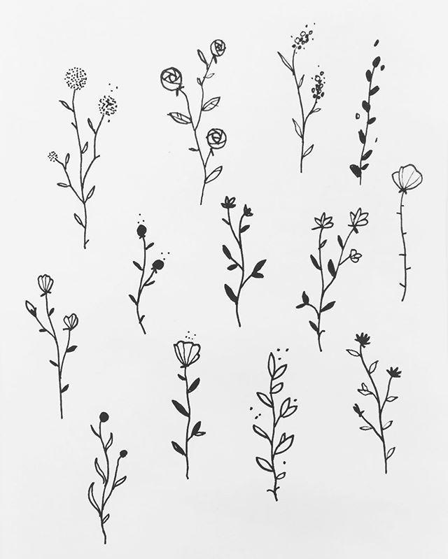 Einige florale Dessins