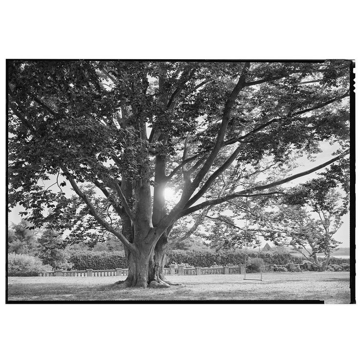 Beautiful Black and White Framed Photograph, by Charles Baker | From a unique…
