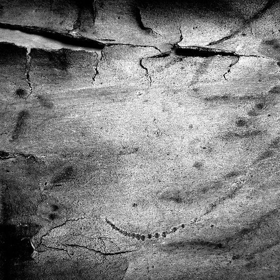 Black & White Abstract Bark # 2