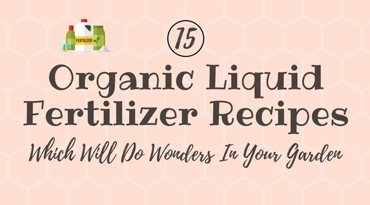 Keeping plants well fed and watered is crucial. Here are 15 Organic liquid fertilizer recipes which will help you with that.