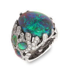http://mathon.lmrpr.com/Images/Collection/feedesmersbague.jpg