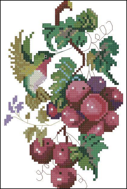 Grape and Hummingbird