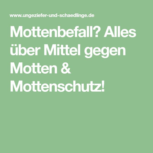 Mottenbefall? Alles über Mittel gegen Motten & Mottenschutz!