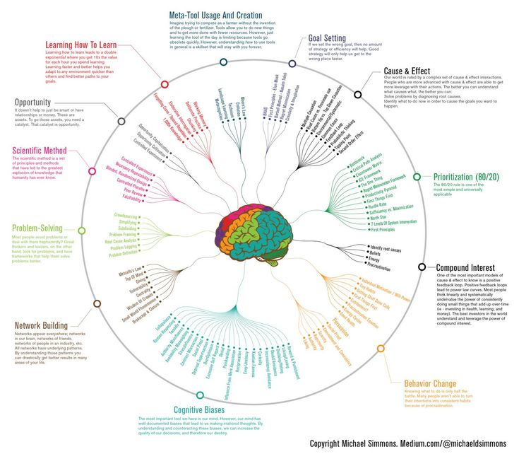 This infographic shows the 'mental models' some of the world's most successful people use to process what's around them.