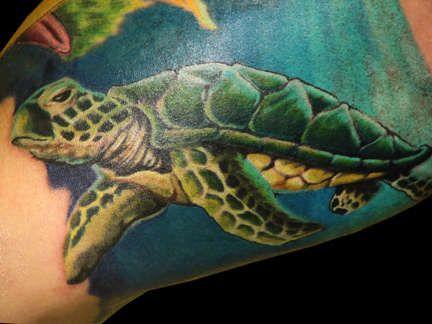 Colorful Turtle Tattoos On Bicep