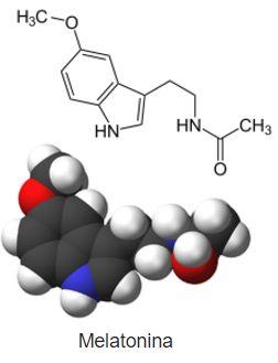 Melatonina eficaz nas fases aguda e crônica da Doença de Chagas