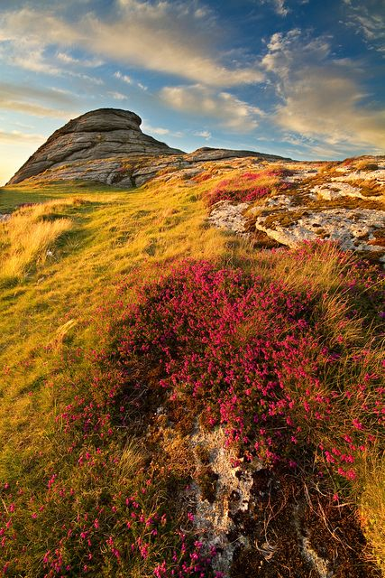 Haytor Vale, Dartmoor, Devon England - One of my favourite places ever (Especially when my brother got his head stuck in between some rocks)
