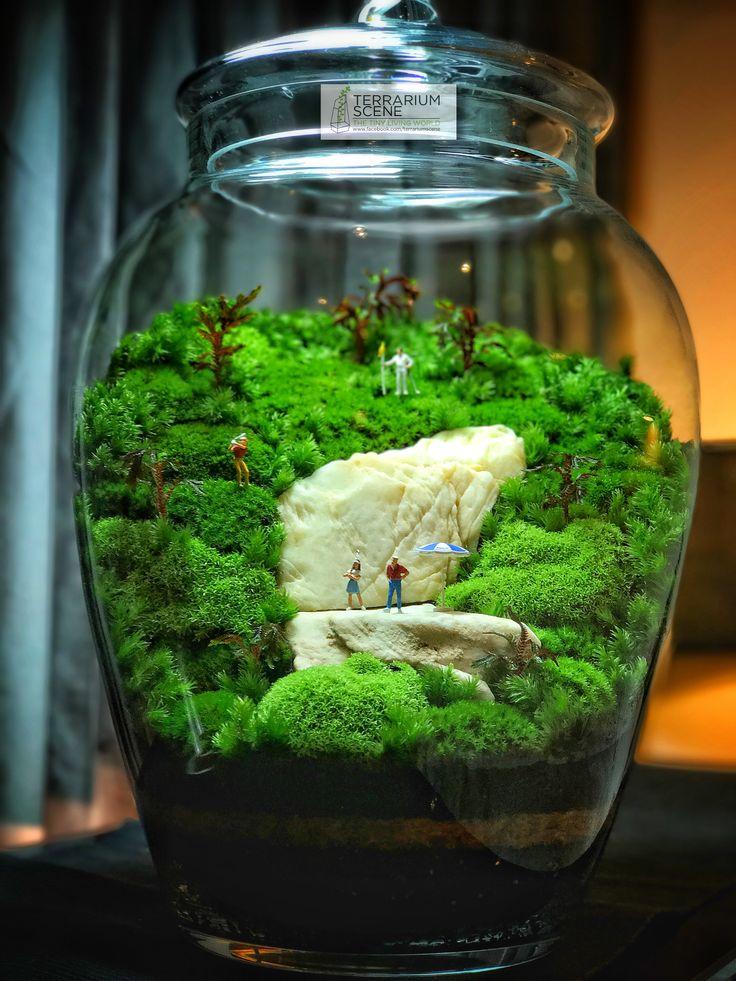 423 best terrarium scene images on pinterest. Black Bedroom Furniture Sets. Home Design Ideas