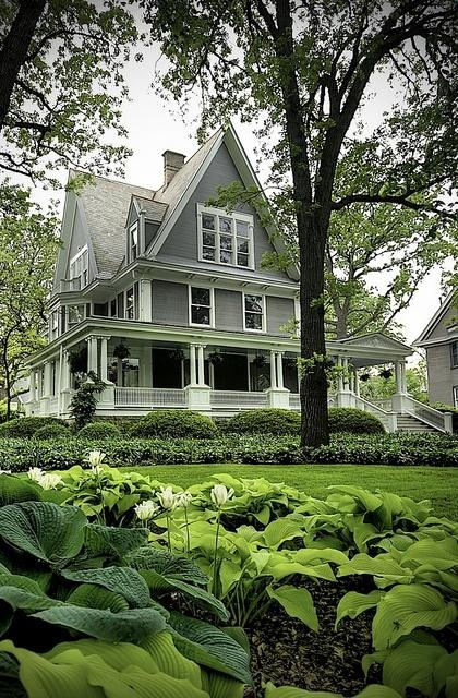 Oak Park, Illinois - would love to drink a cuppa each morning on this porch.