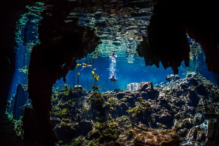 Many tourists may have a less immunity power and dauntlessness. Such people should know about the place details. The temperature of the water is appropriate for every human body. The atmosphere is fresh and healthy. There is no such possibility which can affect the people during cenote tours.   https://absolute-adventure-mexico.com/tours/snorkeling-in-cenote/