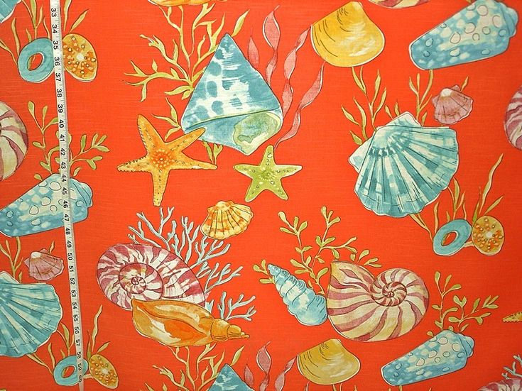 306 best All About Sea images on Pinterest Beach Shells and