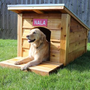 Check out this project on RYOBI Nation - In this project you'll learn how to build a dog house with wood siding and a metal roof. The dog house is made to fit a medium to large sized dog. We'll start by building a platform. Followed by framing out the walls and adding a roof, siding, and deck. This small scale project is a building block towards learning to build enclosed structures.