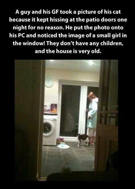 Ghost story | Ghost stories :) | Pinterest | Kid, Ghosts ...