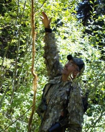 essay on hunting deer Free essay: i calmly squeezed the trigger on my arrow release and let the arrow fly the arrow seemed to soar in slow motion as it tracked upon the deer.
