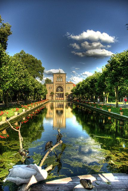 Wilhelma, built as a royal palace, is now a zoo in the northern suburbs of Stuttgart, Germany. It is Europe's only large combined zoological and botanical garden and is home to animals from over 1,000 different species and exotic plants from over 5,000 species.