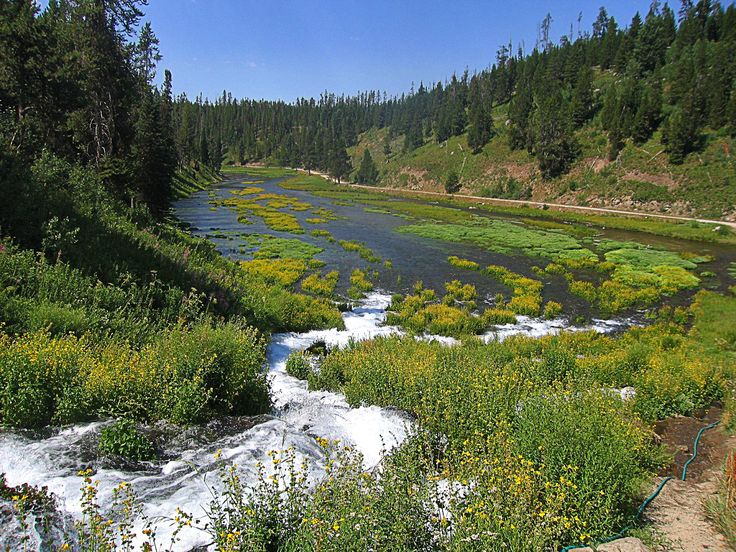 Warm River Springs, Island Park, Idaho by RocDocTravel.com