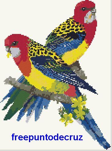 Aves punto de cruz   Dibujos Punto de Cruz Gratis
