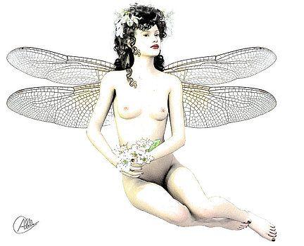 Quim Abella - Fairy luck