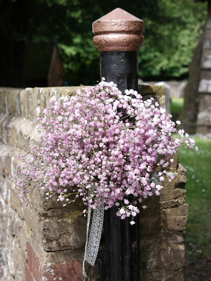 Pink gypsophila, but actually more lilac in colour.