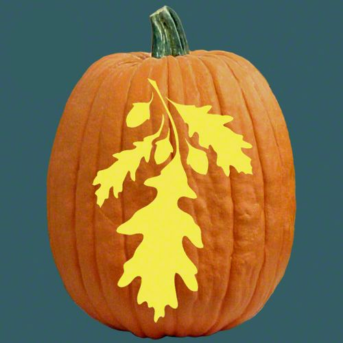 fall leaf pumkin carvings pumpkin carving patterns and