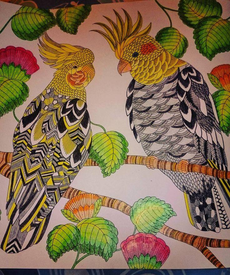 17 Best Images About Color Book Tropical Wonderland Millie