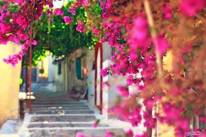 Corfu,Greece <3