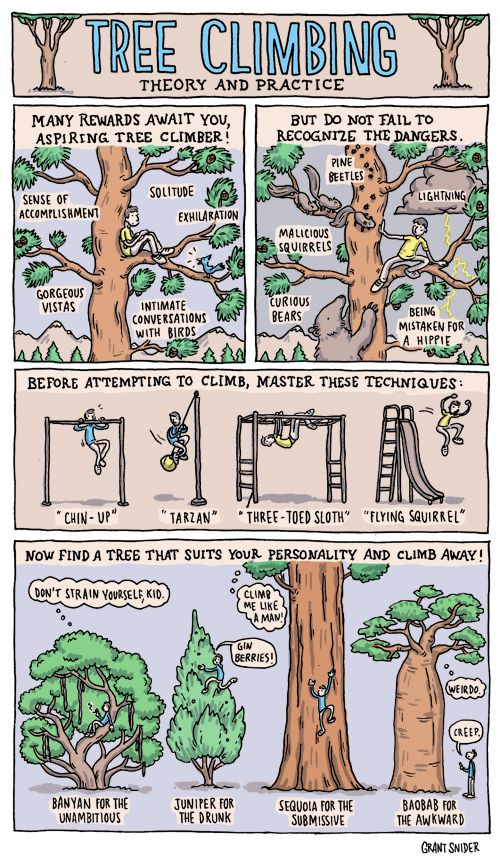 "Tree climbing styles. I always recognized the ""dangers"" and cringed when Morgan did not. :)"