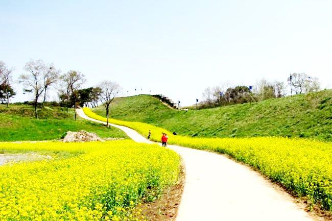 서산시 해미읍성의 봄 풍경