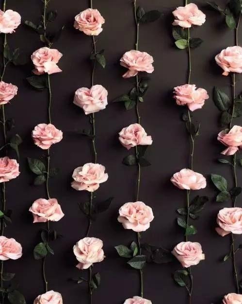Róże ;3