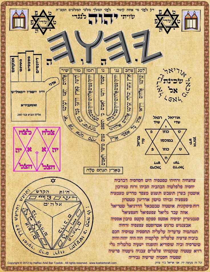 Ariel bar tzadok the kosher torah school in 2020