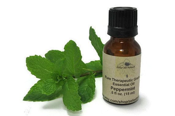 Pure Peppermint Therapeutic Grade Essential Oil by ZelieAllNatural