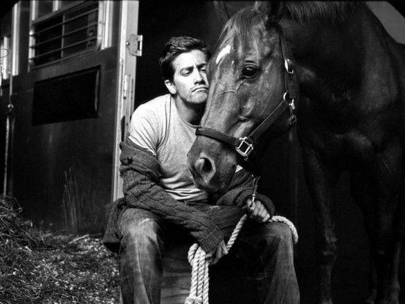 www.pegasebuzz.com/leblog | Jake Gyllenhaal and a horse