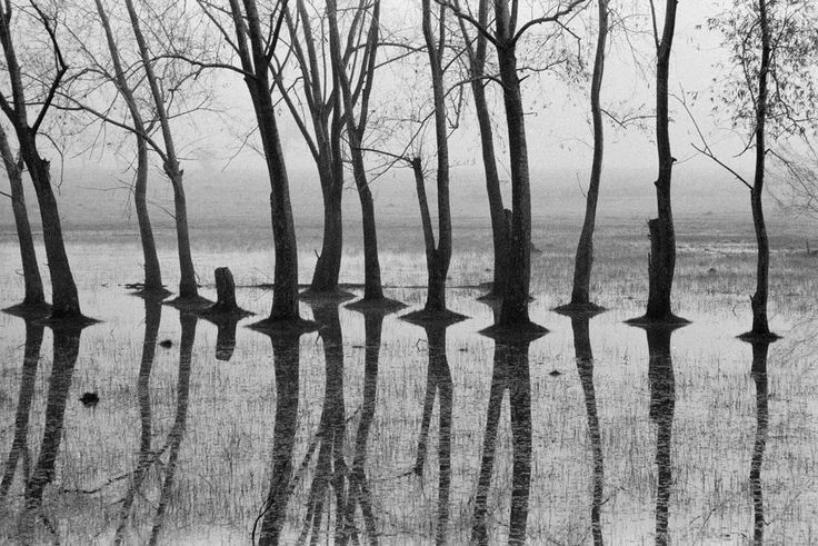 Rene Burri (1933-2014), Argentina. Pampa. South of Buenos Aires. 1958.