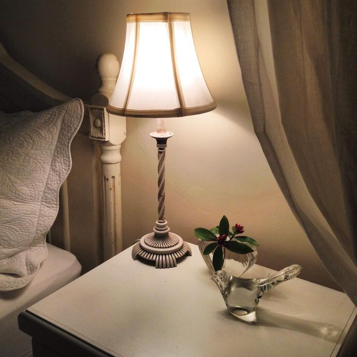 Bird and daphne blossoms @ The Globe Inn Yass accommodation #bedandbreakfast #guest #daphne #bird #VisitYassValley