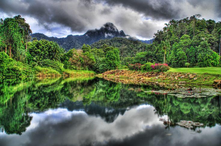 Terre/Nature Jungle  Réflection Imagerie à Grande Gamme Dynamique Langkawi Island Malaisie Brouillard Fond d'écran