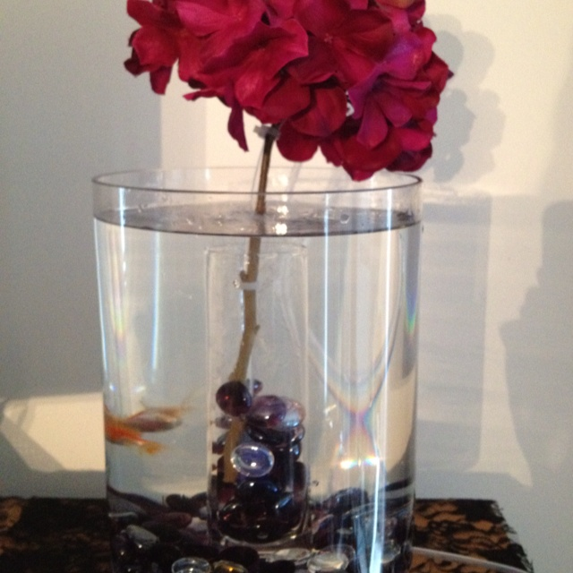 Little fish tank idea $20 with coupons! sensationsofeverything 2 ...