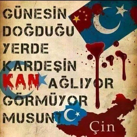 Görmüyor musun.? #DoğuTürkistan